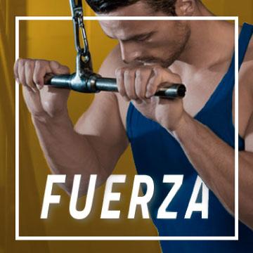 Fuerza - Optimum Fitness